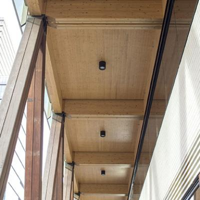 Colonnade columns and engineered timber soffit